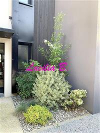 Immobilier de prestige : Maison Contemporaine à vendre - Lucilia Brosset | Lucilia B. : votre spécialiste de l'immobilier sur Tours et environs